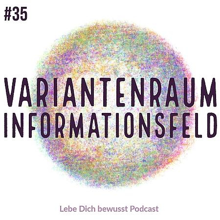 Variantenraum Informationsfeld