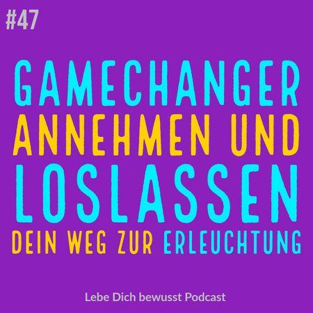 Gamechanger Annehmen und Loslassen Erleuchtung
